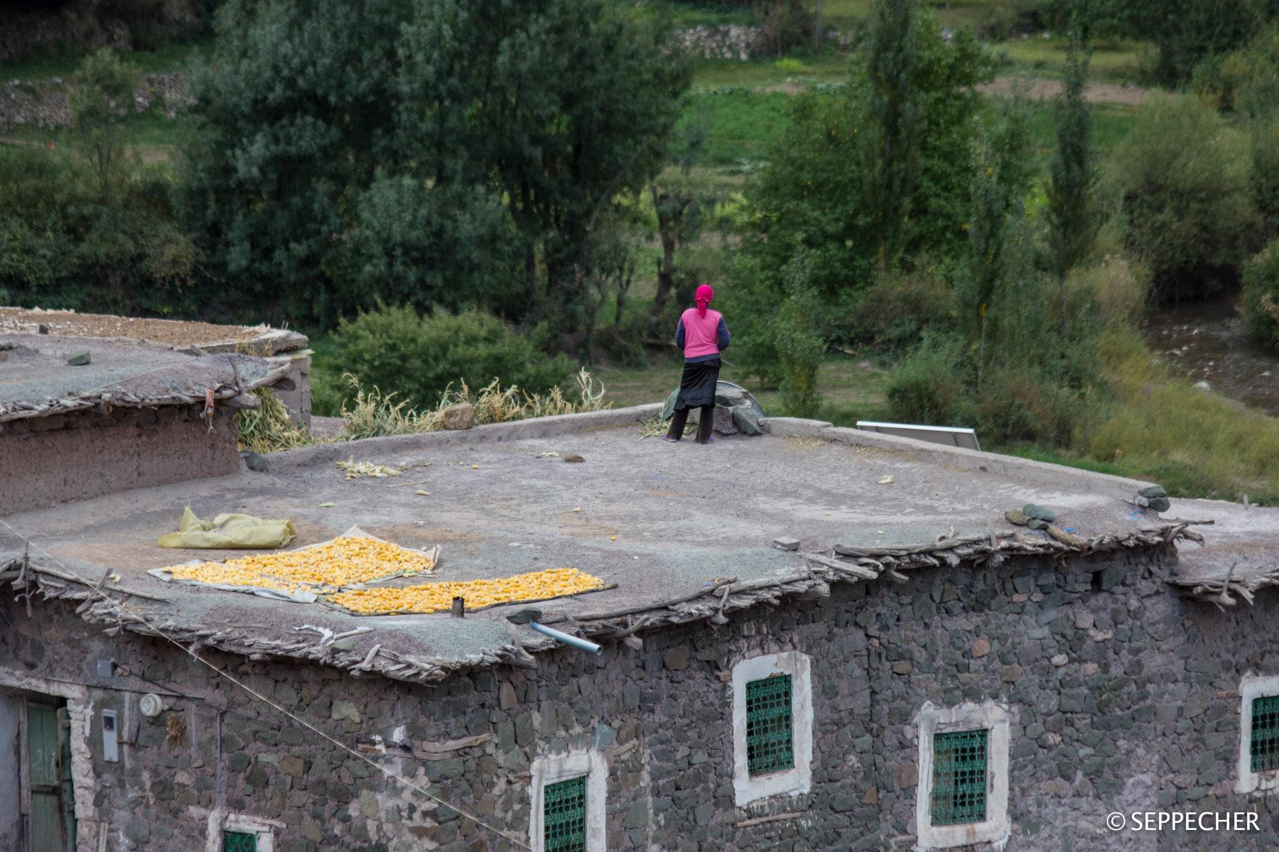 Le toit panoramique.