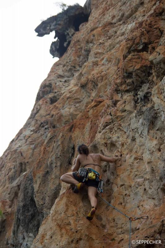 La grimpe.